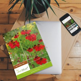 Just Must Perennials Brochure